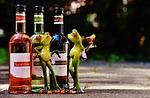 WineFrogs